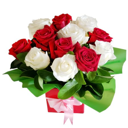 RBX381 Red and White Roses in Box