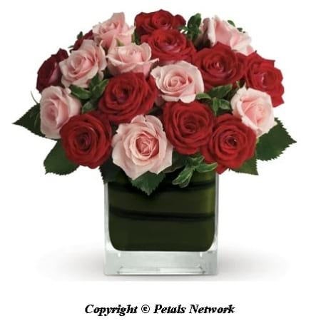 PN103 Red and Pink Roses in Vase