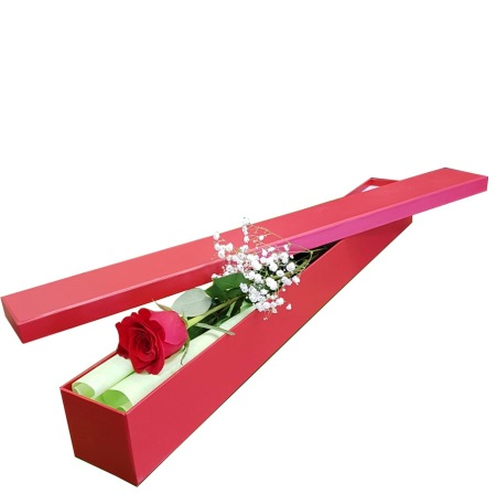 C12.1 Single Boxed Rose