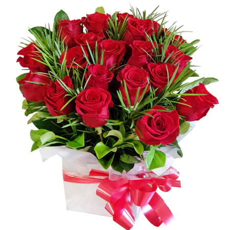RBX380 20 Red Roses in Box