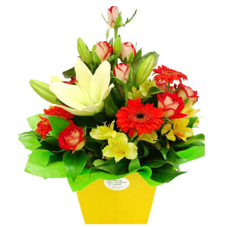 RBX124 Bright arrangement