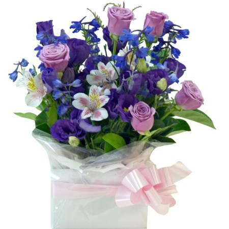 RBX172 Pink and purple in arrangement