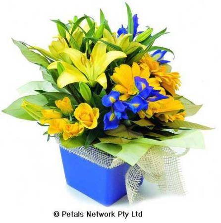 C6.2 Yellow and blue arrangement