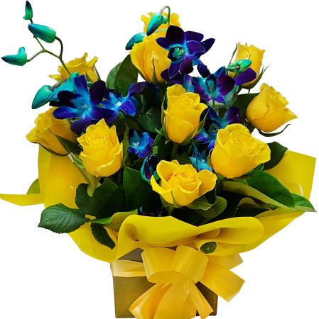 RBX332 Yellow and blue Mini-Box