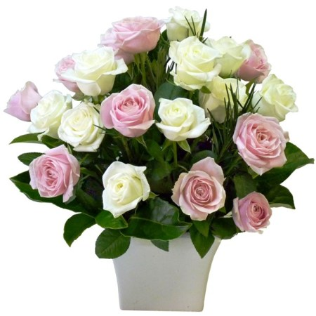RVA 111 Pink and white roses arrangement