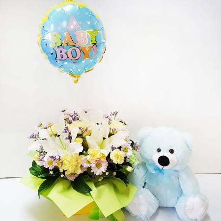 RBX367 Baby Boy Set