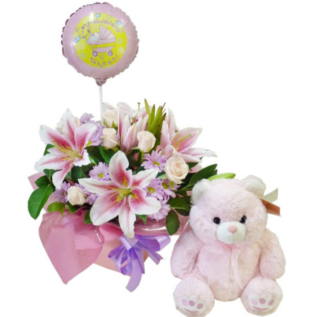 RBX173 Baby Girl Set