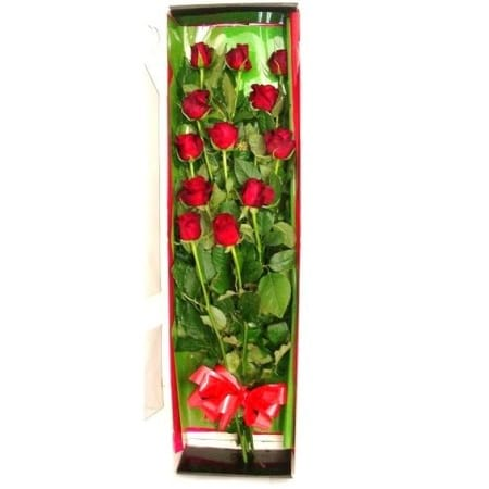 RST105 Roses in Box