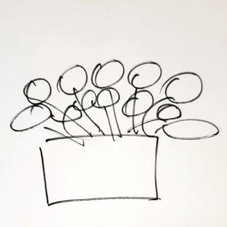 DC03 Designer`s Choice, Box Arrangement, $39/50/80/100