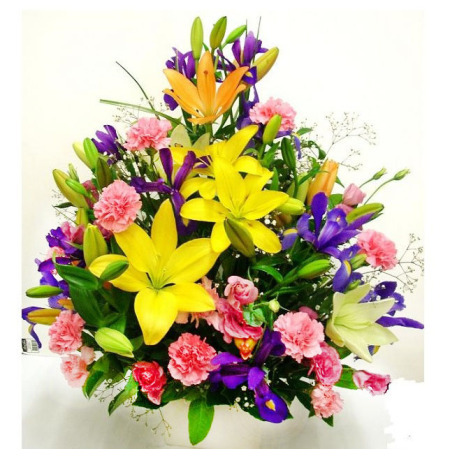 RPT100 Colourful arrangement